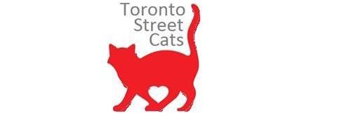 Toronto Street Cats